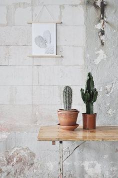 For Plant Lovers Studio Joop
