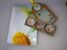 Set of 3 Super Strong Spring Daisy Bottlecap by minipretties, $6.00