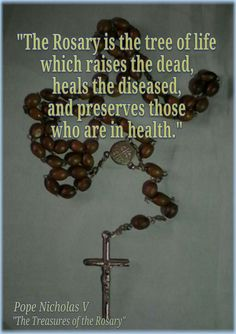 """""""The Rosary is the tree of life which raises the dead, heals the diseased and preserves those who are in health."""" -Pope Nicholas V Beautiful (prayer) Rosary Novena, Rosary Prayer, Praying The Rosary, Holy Rosary, Rosary Catholic, Catholic Prayers, Catholic Saints, Catholic Religion, Catholic Quotes"""