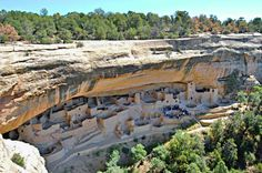 The largest cliff dwelling in North America is the Cliff Palace, made by Ancient Pueblo peoples, or Anasazi