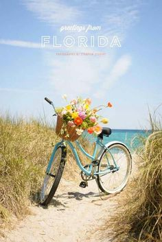 Blue bicycles with a wicker basket for flowers or a kitten. Lily Rose didn't ride her bike on the beach but hers had a basket just perfect for Peppy. Photo Velo, Foto Transfer, Bicycle Art, Cruiser Bicycle, Bicycle Design, Old Bikes, Foto Art, Vintage Bicycles, Scenery