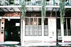 The rain and the Green  #Neworleans#Nola#instagram#love#travel#explore#thebigeasy#keepexploring#igers#traveltalediary#travel#instatravel#vscotravel#vsco#vscocam#ig_nola#lonelyplanet#travelbug#igersneworleans#frenchquarter#igerschicag#Followyournola#iheartnola#showmeyournola by hena.malik