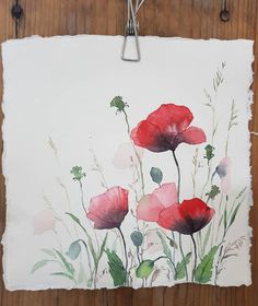 Illustrations Sharing Page ( Art Tutorials Watercolor, Flower Painting, Art Painting, Poppy Painting, Painting, Flower Drawing Tutorials, Watercolor Illustration, Watercolor Paintings Easy, Floral Watercolor