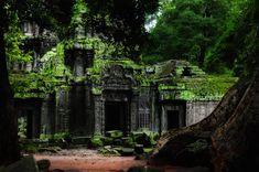 900 year old jungle temple - Ta Promh, Cambodia - Imgur