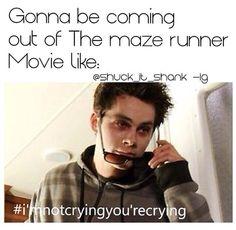 Bildresultat för gally maze runner eyebrows meme