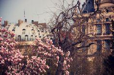 Paris (Tuileries)