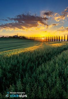 Tuscan Morning by Michele Rossetti (Italy)
