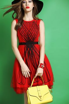 The red stylish chic