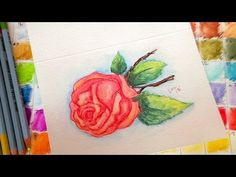 vintage rose watercolor pencil tutorial, by thefrugalcrafter Watercolor Video, Watercolour Tutorials, Watercolor Rose, Watercolor Pencils, Watercolor Cards, Watercolor Paintings, The Frugal Crafter, Art Therapy Projects, Coloring Tutorial