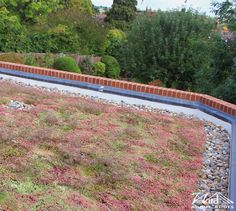 Wild About Roofs - Sedum Mix Roof #WildAboutRoofs #GreenRoofs #nature #green #mothernature #beautiful #garden #plants #naturelover #lovenature #earth #roofing #roofs #newhome #decoration #environment