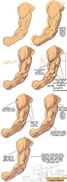 【新提醒】男性手臂-绘画教程 - 原画设...