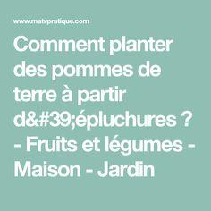 Comment planter des pommes de terre à partir d'épluchures ? - Fruits et légumes - Maison - Jardin