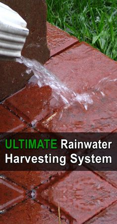 Ultimate Rainwater Harvesting System - The rainwater harvesting system in this video is amazing. It holds about pounds of water and can provide enough water for a small family. Water From Air, Water Water, Rainwater Harvesting System, Lawn Sprinklers, Water Collection, Water Storage, Natural Garden, Homestead Survival, Water Systems