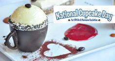 """Our Valentine's Menus roll out next week w/ special cupcakes to support Cupcake Day & SPCA! Photo: Italian Kitchen's Tiramisu """"cup cake"""". Details at www.glowbalgroup.com."""