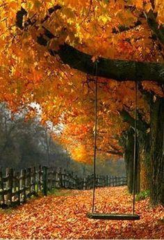 Swinging on a crisp, cool, autumn day.