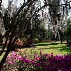 """Summerville, SC, """"Flowertown USA"""" -by BL Decker"""