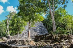 """The structure """"La Iglesia"""" at Coba is 24 meters high and is the second tallest at this archaeological site. Coba Ruins, Mayan Ruins, Swimming With Whale Sharks, Cancun Mexico, Tour Operator, Archaeological Site, Riviera Maya, Merida, Tour Guide"""