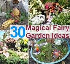 High Quality Ideas For Fairy Gardens