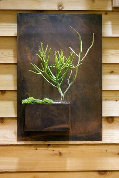Metal and wood slats. Vertical gardening with palettes.  Vertical garden ideas