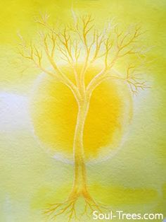 Soul Trees®: The Chakras - The third chakra, the Solar Plexus, is yellow and located between the navel and the rib cage. This chakra is sometimes referred to as the power chakra. The Solar Plexus holds the energy that is about identity: the ego, sense of self, setting boundaries, will power, and our fears. This chakra is about developing self-control.