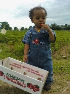 Throwback: Strawberry Picking with Young Sun