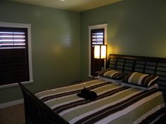 White Casing, Dark Stained Shutters, Dark Walls.  Cat on Bed :)