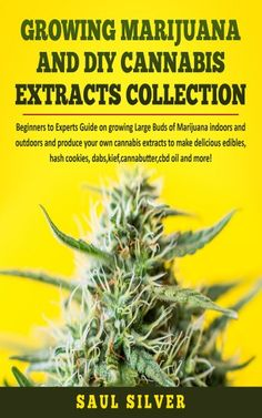 How Plants Grow, Cannabis Cultivation, Marijuana Plants, Hydroponics System, Emotional Pain, Hemp Oil