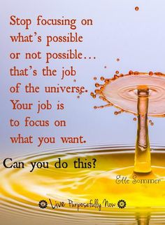Your job...focus on what you want not what you're worried about.