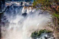Iguazu: La niebla (the mist)