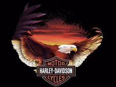 Take a Ride on Eagle's Wings - Harley-Davidson