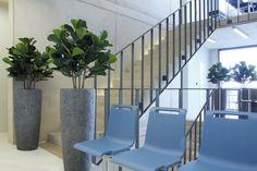 rocky planter supplied by koberg