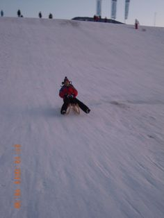 Tobogganing on icy slopes can be painful!!! Bavaria