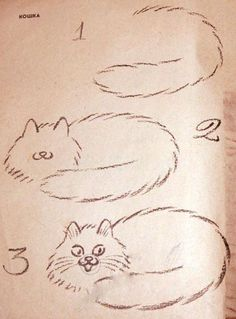 Аnother drawing lesson - cat