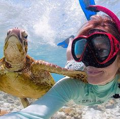 GoPro Photography |  #GoPro #UnderwaterPhotography #Photography
