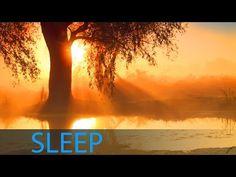♫ ♫ ♫ 8 Hour Sleep Music for Insomnia: Delta Waves Sleep Meditation Music, Dee. Indian Meditation, Healing Meditation, Meditation Music, Mindfulness Meditation, Calming Music, Relaxing Music, Shamanic Music, Om Mantra, Deep Sleep Music