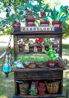 Professor Sprout Herbology Cabinet - so cute (: