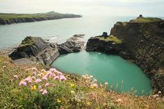 ~ Abereiddi Blue Lagoon ~ Pembrokeshire ~ formerly a small slate quarry ~ Wales ~ UK ~ Dh Lawrence, Costa, Pembrokeshire Coast, Cliff Diving, Hidden Beach, Snowdonia, Turquoise Water, Blue Lagoon, Tropical Paradise
