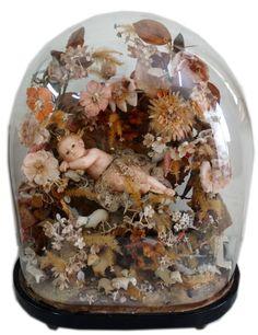 Glass-Dome.jpg (924×1200)