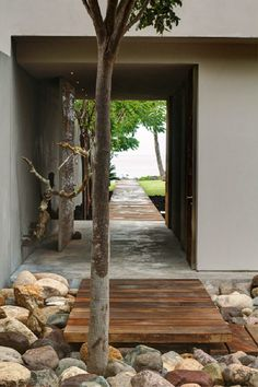 Tree And Stone Outdoor Corridor Wooden Pathway Exotic Landscape Home