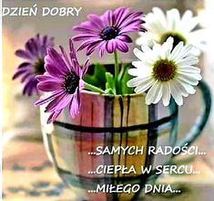 Plants, Den, Best Wishes Messages, Good Afternoon, Good Morning Funny, Plant, Planting, Planets