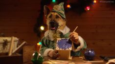 Adorable dogs and cats dressed as Santa's elves with human hands making toys: just another thing to. Free online Santa's Elves - Dogs and Cats with ecards on Christmas Christmas Party Games, Funny Christmas Cards, Christmas Music, Christmas Humor, Christmas Videos, Dog Christmas Pictures, Christmas Animals, Christmas Cats, Merry Christmas