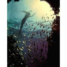 mermaid Fairytale ❤ liked on Polyvore featuring mermaid, backgrounds, pictures, water and ariel