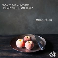 Michael Pollan advice