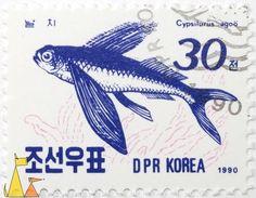 Japanese flyingfish, DPR Korea, North Korea, stamp, fish, 1990, 30, Cypsilurus agoö, Cypselurus agoo, Cheilopogon agoo