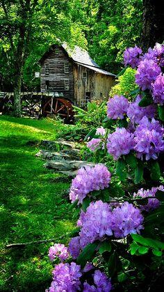 Old farm, farm animals, sweet country living Country Barns, Old Barns, Country Life, Country Living, Country Charm, Country Roads, Beautiful World, Beautiful Places, Beautiful Farm