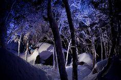 Ski backcountry