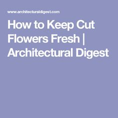How to Keep Cut Flowers Fresh | Architectural Digest