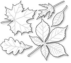 Impression Obsession - Die - Leaves-These are US-made steel dies compatible with most table-top die cutting machines. The group together measures 3 x Fall Crafts, Diy And Crafts, Crafts For Kids, Arts And Crafts, Paper Crafts, Coloring Books, Coloring Pages, Leaf Template, Templates