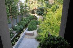 Beautiful city garden!