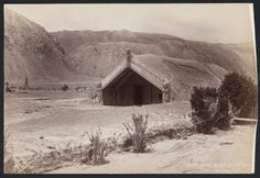 Early New Zealand Photographers: Hinemihi meeting house at Te Wairoa, after the Mt Tarawera eruption Nz History, Local History, Polynesian People, Maori Designs, Auckland New Zealand, Castle Wall, Maori Art, Kiwiana, Religious Studies